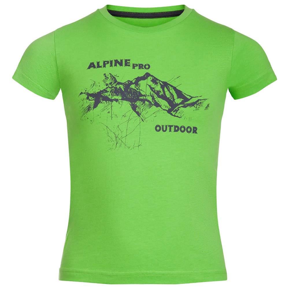 Футболка Alpine Pro Dayo