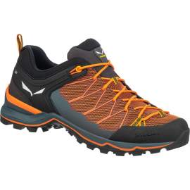 Кроссовки Salewa MS MTN Trainer Lite